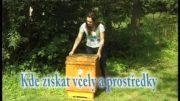 Ako začať s včelárením
