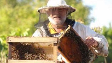 O včelách – Václav Uher – Duše K – Jaroslav Dušek