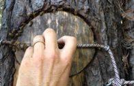 Získavanie a spracovanie propolisu