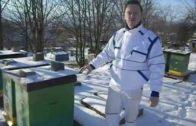 Trojkráľový pohľad do včiel