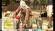 Tradičné medobranie v Indii