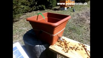 Napájačka pre včielky